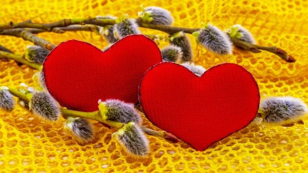 Coeurs rouges près d'une branche de saule avec des chatons