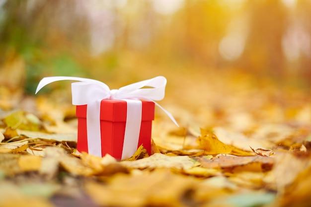 Coffret cadeau automne