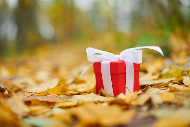 Coffret cadeau en feuilles d'automne