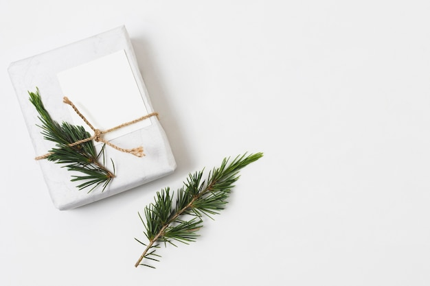 Coffret cadeau avec fougère et ficelle