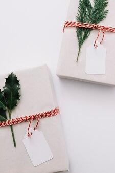 Coffrets cadeaux avec des plantes vertes