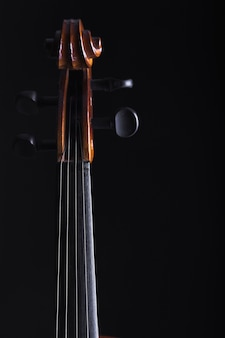 Coiffe et manche de violoncelle