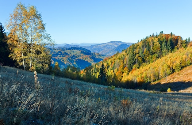 Col de nimchich de montagne d'automne (carpates, ukraine) et arbres colorés sur la colline.