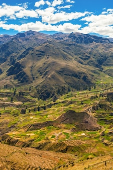 Colca valley, pérou