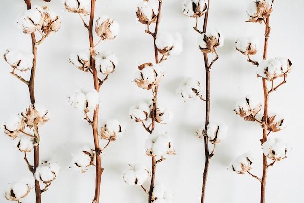 Collection de branches de coton à plat