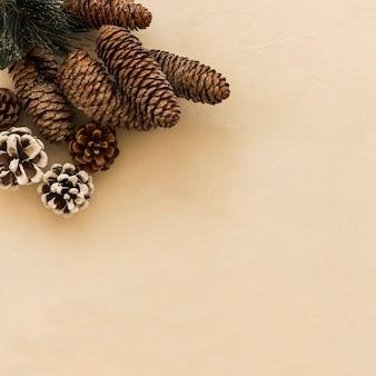 Collection de chicots décoratifs et de brindilles de conifères