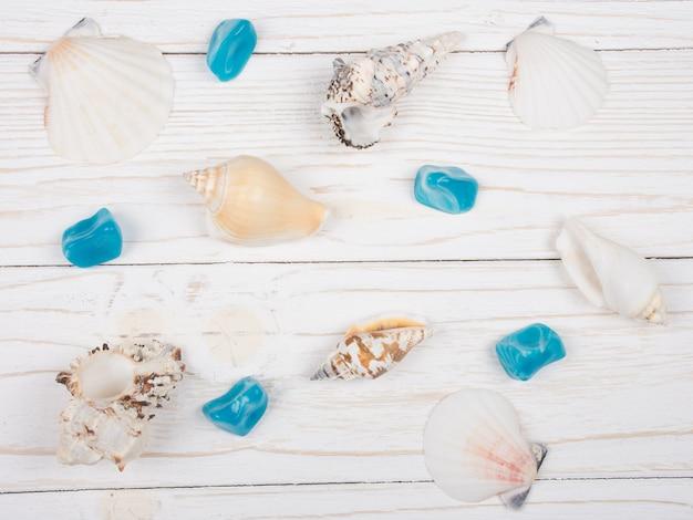 Collection de coquillages et de pierres