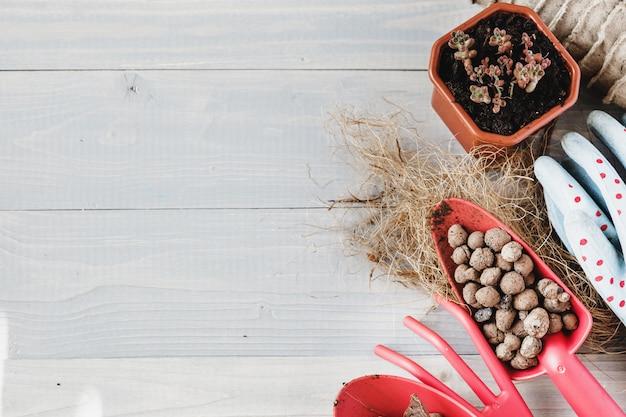 Collection de différentes plantes d'intérieur, gants de jardinage, terreau et truelle sur un fond en bois blanc. fond de plantes de rempotage.