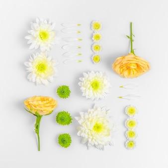 Collection de fleurs isolé sur blanc