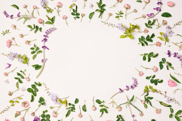 Collection de fleurs violettes et feuilles vertes