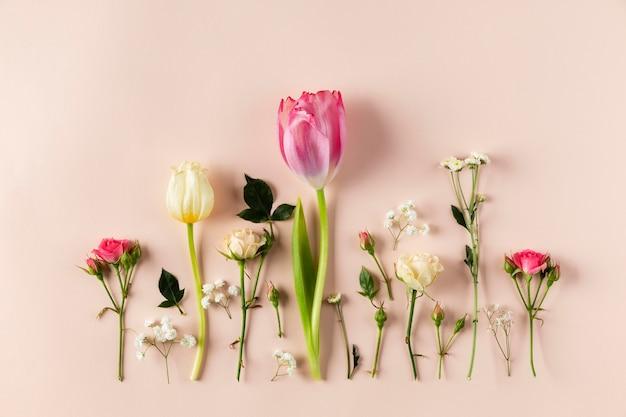 Collection de fleurs vue de dessus
