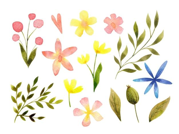 Collection florale d'aquarelle d'isolement sur le jeu d'art de clip de fleurs et de feuilles conception botanique