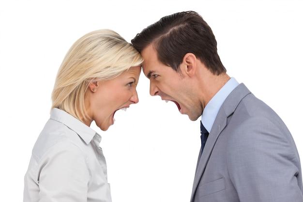 Collègues se disputant tête contre tête sur fond blanc