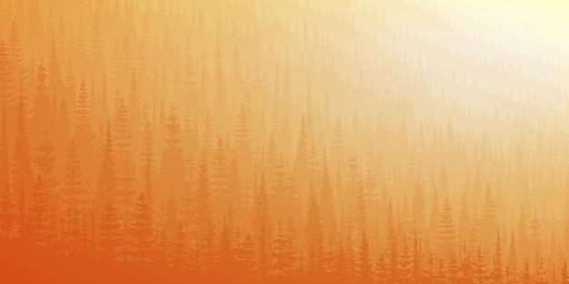 Colline couverte de forêt dense dans la lumière du matin