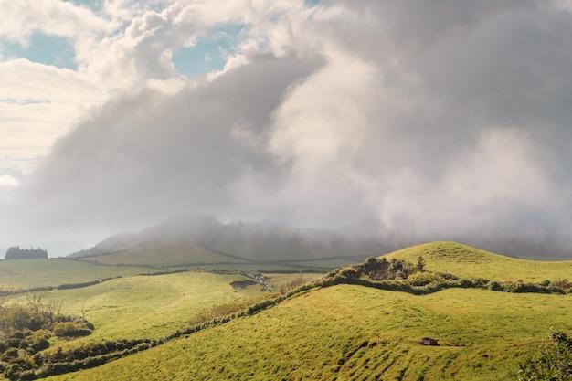 Les collines vert émeraude de l'île san miguel. açores le portugal