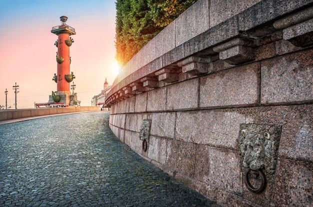Colonne rostrale, à la lumière du soleil couchant à saint-pétersbourg et des lions de granit sur la flèche de l'île vassilievski