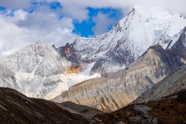 Coloré dans la forêt d'automne et la montagne de neige à la réserve naturelle de yading, le dernier shangri la