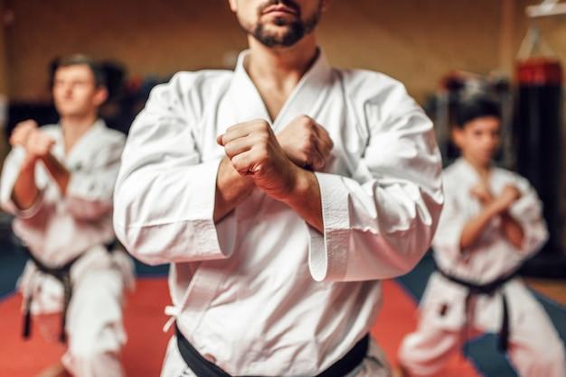Les combattants d'arts martiaux perfectionnent leurs compétences