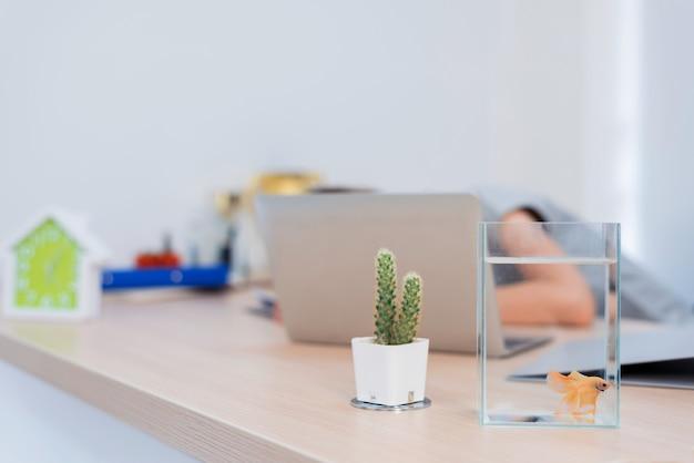 Combattre des poissons dans un bol. petit animal de compagnie pour se détendre lorsque vous travaillez au bureau.