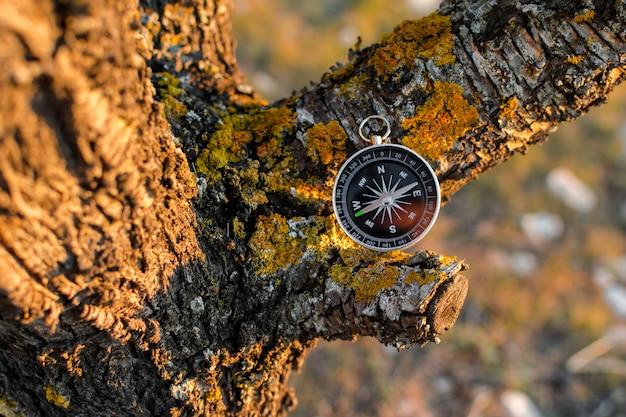 Un compas magnétique dans un arbre d'automne contre.