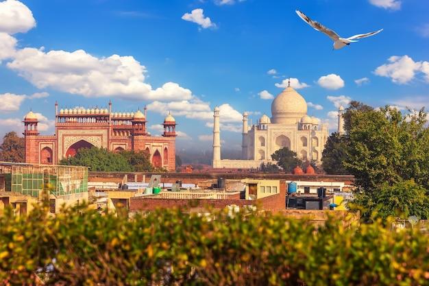 Complexe du taj mahal, vue depuis le toit d'agra, inde.