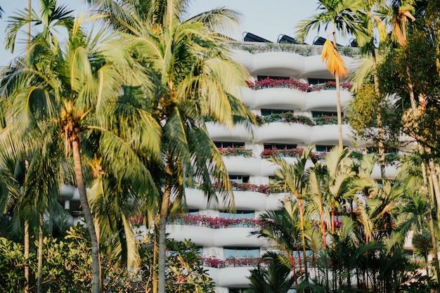 Complexe hôtelier parmi les palmiers en été