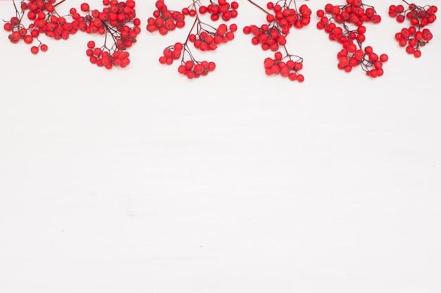 Composition d'automne. cadre fait de baies de rowan.