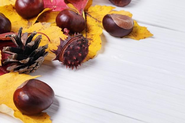 Composition d'automne avec des châtaignes et des feuilles jaunes autour sur des planches de bois blanches.