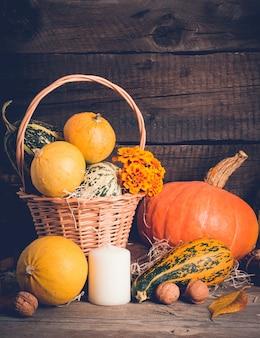 Composition d'automne avec des citrouilles. concept de thanksgiving, espace de copie