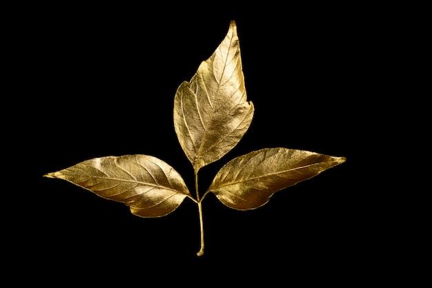 Composition d'automne de différentes feuilles et lettres d'or