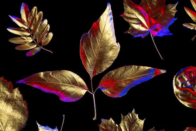 Composition d'automne de différentes feuilles d'or sur un fond noir