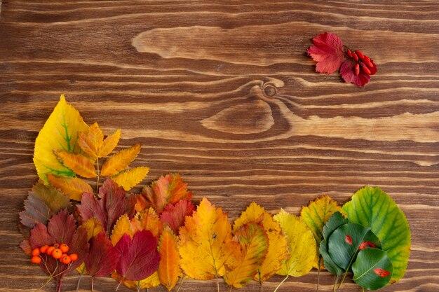 Composition d'automne feuilles d'automne colorées sur fond de bois plat vue de dessus copie espace