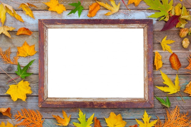 Composition d'automne, feuilles d'automne lumineuses et cadre photo sur bois