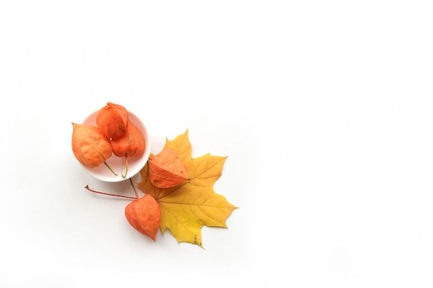 Composition d'automne avec des feuilles sèches