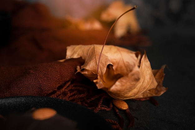 Composition d'automne. foulard marron et feuilles d'érable d'automne. mise à plat. vue de dessus. photo de haute qualité