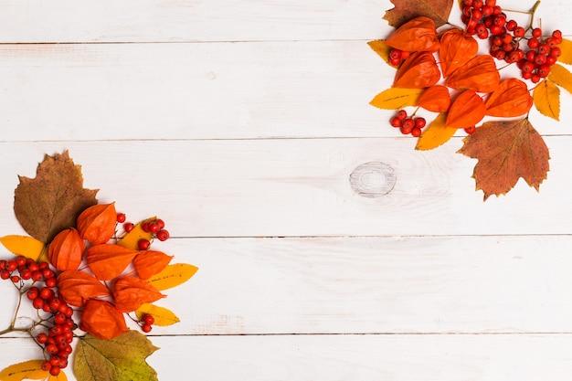 Composition d'automne de lleaves, physalis, rowan sur fond de bois blanc. mise à plat, vue de dessus, espace copie