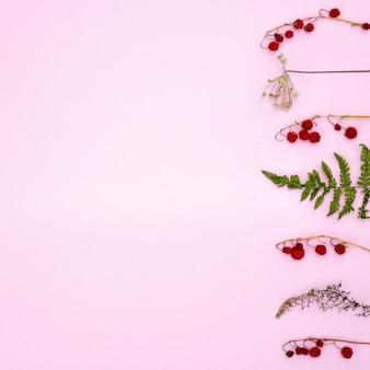 Composition d'automne. motif de feuilles vertes sèches et de baies rouges sur une branche sur un fond rose tendre. pose à plat, vue de dessus, surface, carré.