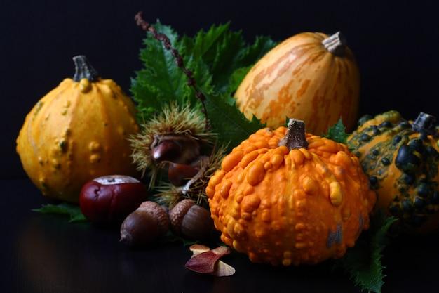 Composition d'automne sur noir. concept jour de thanksgiving