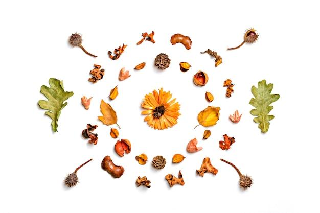 Composition d'automne à partir de feuilles séchées, de baies et de fleurs