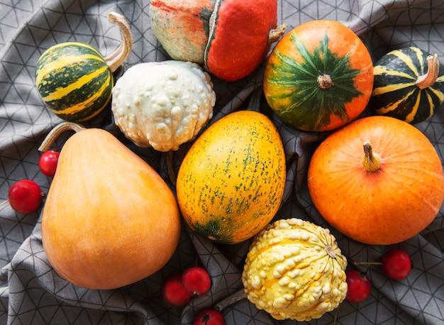 Composition d'automne, saison d'automne confortable, citrouilles et feuilles sur fond textile. symbole de la fête de thanksgiving, mise à plat