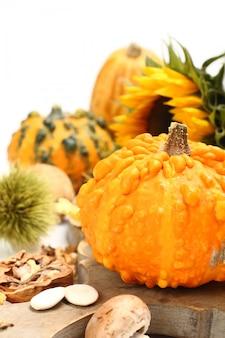 Composition d'automne (vieille planche de bois de citrouilles). concept jour de thanksgiving