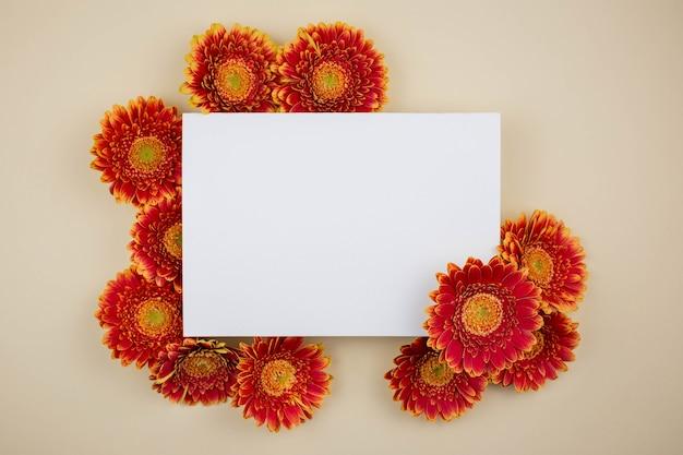 Composition avec de belles fleurs de marguerite gerbera et carte de voeux vierge sur une surface beige