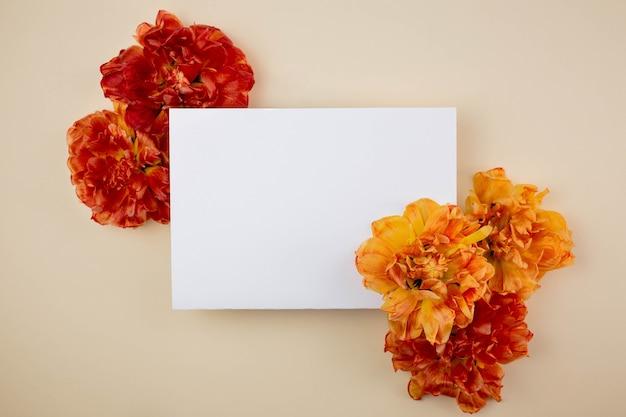 Composition avec de belles fleurs de tulipes pivoine et carte de voeux vierge sur une surface beige