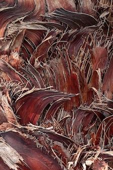 Composition en bois à plat