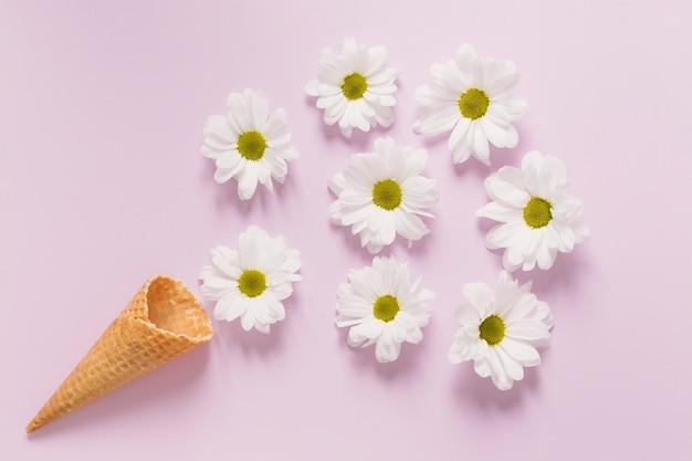 Composition de camomille près de cornet de crème glacée