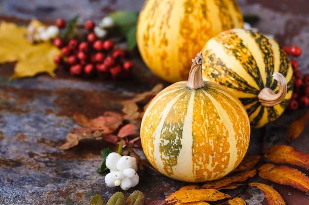 Composition de citrouilles décoratives et de feuilles d'automne sur la rouille, horizontale