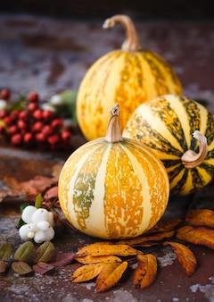 Composition de citrouilles décoratives et de feuilles d'automne sur la rouille