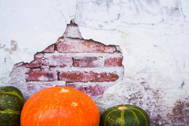 Composition de citrouilles sur un mur de briques