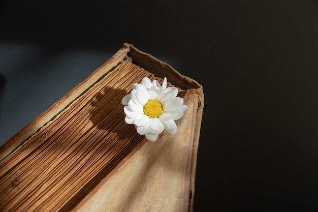 Composition créative avec des livres et des fleurs