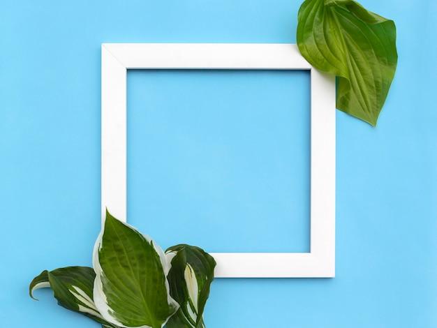 Composition créative minimale - cadre carré avec des feuilles sur fond clair.